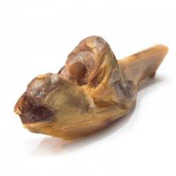 עצם ברושטה