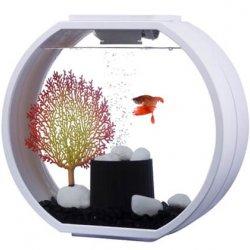 אקווריום דקו מיני Deco mini Aquarium