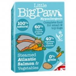 מזון לחתולים Big Paw סלמון